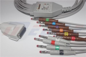 Burdick 012-0844-01 EKG Cable With 10/12 Leadwires, AHA, 4.0 Banana Type